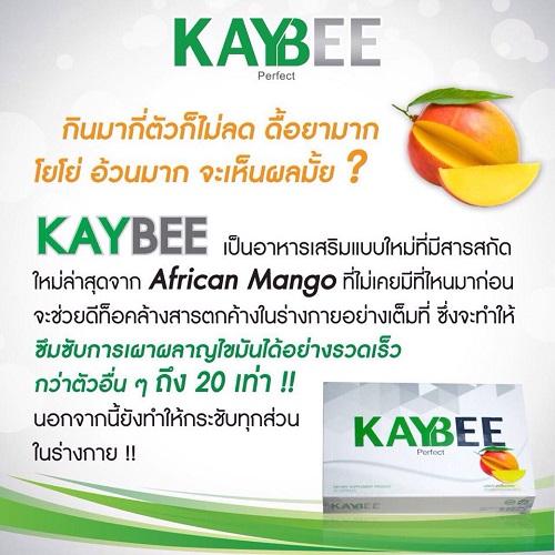 Kaybee 3