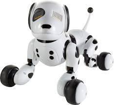 609 Zoomer Dog