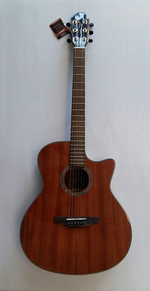 TT-33C