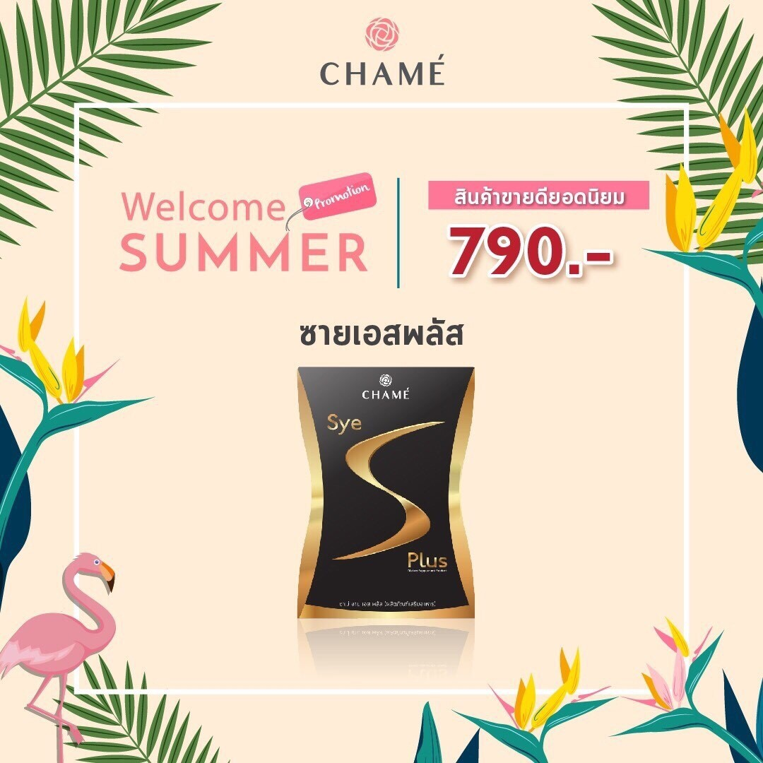 [NEW] Chame Sye S Plus 1 กล่อง
