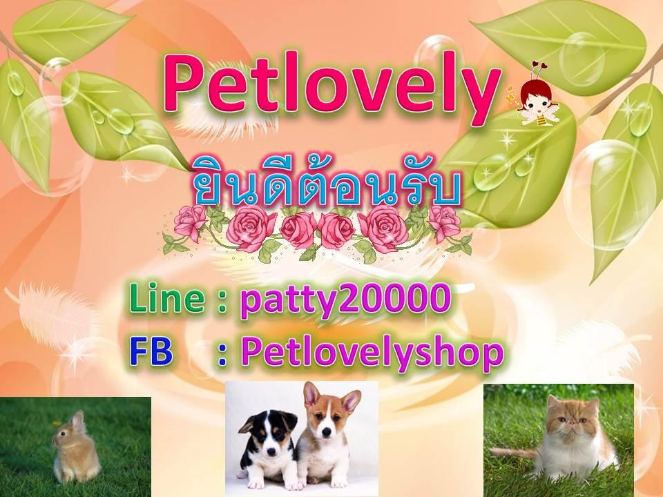 Petlovely